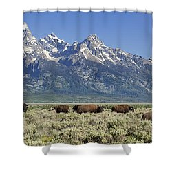 The Boys Club Of Grand Teton Shower Curtain by Sandra Bronstein