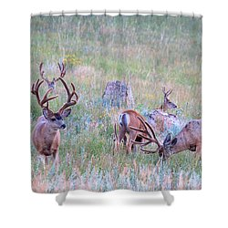 The Boys In The Band Shower Curtain by Jim Garrison