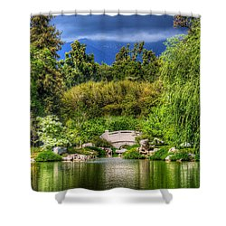 The Bridge 12 Shower Curtain by Richard J Cassato