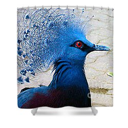 Shower Curtain featuring the photograph The Bright Blue Bird by Nina Silver