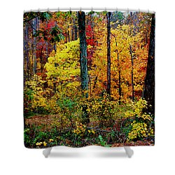 Shower Curtain featuring the photograph The Bright Colors Of Fall by James C Thomas