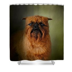 The Brussels Griffon Shower Curtain by Jai Johnson