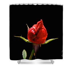 The Bud Shower Curtain