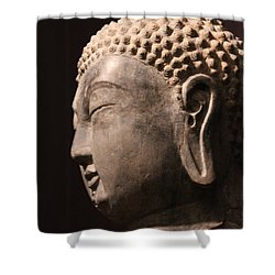 The Buddha 2 Shower Curtain by Lynn Sprowl