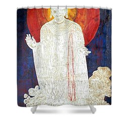 Shower Curtain featuring the painting The Buddha's Light by Fei A