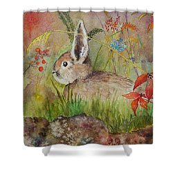 The Bunny Shower Curtain by Mary Ellen Mueller Legault