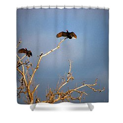 The Buzzard Roost Shower Curtain by Joyce Dickens