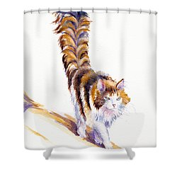The Calico Cat That Walked By Himself Shower Curtain
