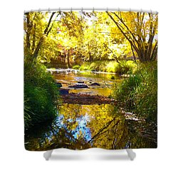 The Calm Side Shower Curtain by Tiffany Erdman