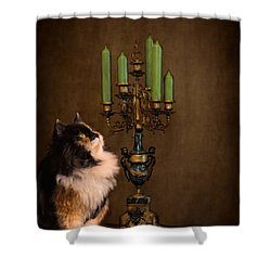 The Cat And The Candelabra Shower Curtain by Jai Johnson