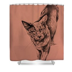 The Cat  Shower Curtain by Derrick Higgins