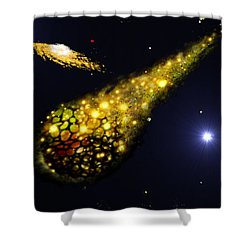 The Catalyst Shower Curtain