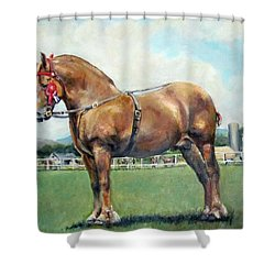 Shower Curtain featuring the painting The Champ by Donna Tucker