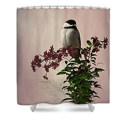 The Chickadee Shower Curtain by Davandra Cribbie