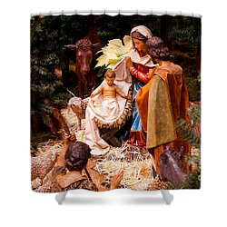 The Christmas Creche At Holy Name Cathedral - Chicago Shower Curtain