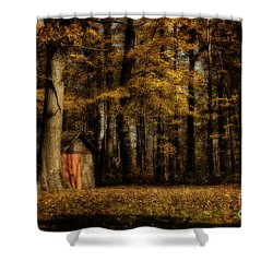 The Clearing Shower Curtain by Lois Bryan