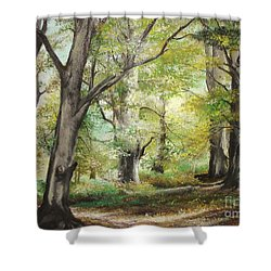 Shower Curtain featuring the painting The Clearing by Sorin Apostolescu