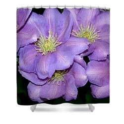 The Clematis Gang Shower Curtain by Sarah OToole
