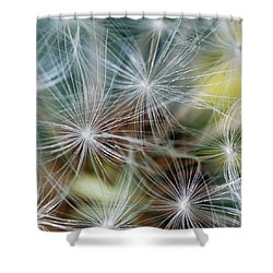 The Clock Shower Curtain by Wendy Wilton
