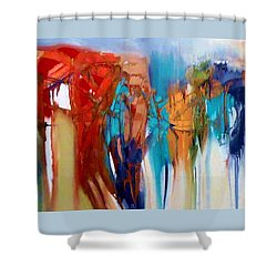 The Closet Shower Curtain by Lisa Kaiser