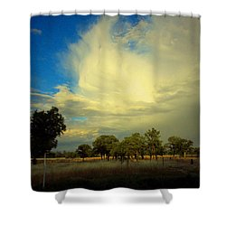 The Cloud Shower Curtain by Joyce Dickens