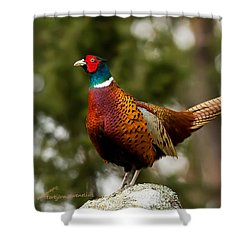 The Cock On Top Of The Rock Shower Curtain by Torbjorn Swenelius