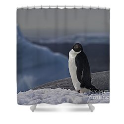 The Coldest Place On Earth... Shower Curtain