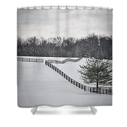 The Color Of Winter - Bw Shower Curtain by Mary Carol Story