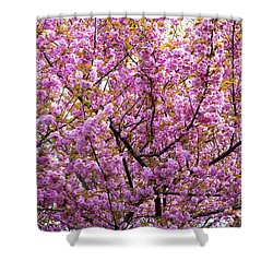 The Color Purple 2 Shower Curtain by Paul W Faust -  Impressions of Light