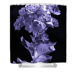 The Color Purple Shower Curtain by Sandi OReilly