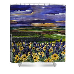 The Colors Of The Plateau Shower Curtain by Jennifer Lake