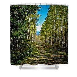 Shower Curtain featuring the painting The Cool Path Through Arizona Aspens by John Haldane