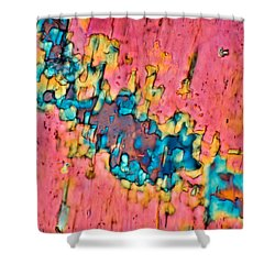 The Crack In The Wall Shower Curtain by Tom Phillips
