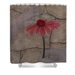 The Creation Of Eve Shower Curtain by Barbara St Jean