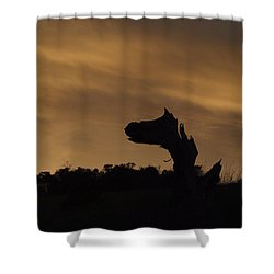 Shower Curtain featuring the photograph The Creature by Priya Ghose