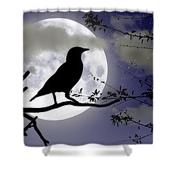 The Crow And Moon Shower Curtain by Brian Wallace