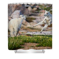 The Dance Of Joy Shower Curtain by Jim Garrison