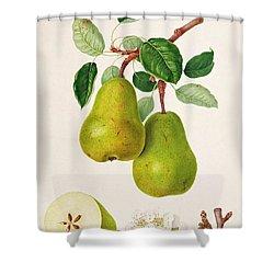 The D'auch Pear Shower Curtain