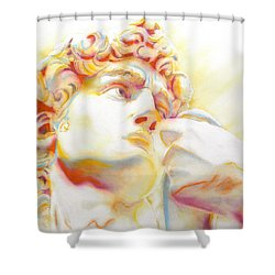 The David By Michelangelo. Tribute Shower Curtain