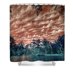 The Day After... Shower Curtain by Linda Unger