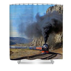 The Daylight 4449 Montana Driveby Shower Curtain