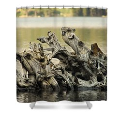 The Dead Shall Rise Shower Curtain by Donna Blackhall