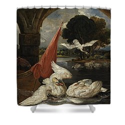 The Descent Of The Swan, Illustration Shower Curtain by James Ward