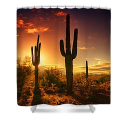 The Desert Awakens  Shower Curtain by Saija  Lehtonen