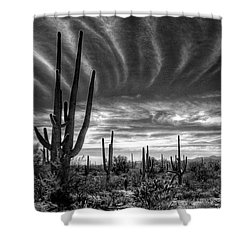 The Desert In Black And White Shower Curtain by Saija  Lehtonen