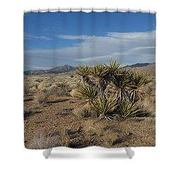 The Desert In Winter Shower Curtain