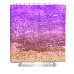 The Desert Shower Curtain by Peter Tellone