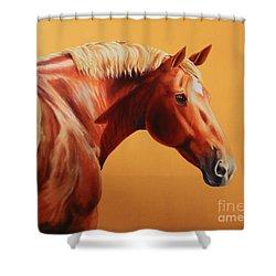 The Destrier Shower Curtain