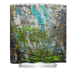 The Dirty Window Shower Curtain