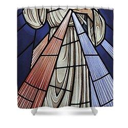 The Divine Mercy Shower Curtain